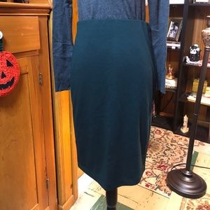 Blueberry-Green Skirt by Premise